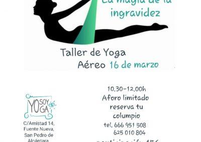 Taller Yoga Aéreo