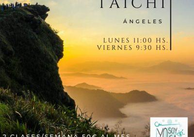 TAICHI - ENERO 2020 - LU/11:00 HS. -VI/9:30 HS.